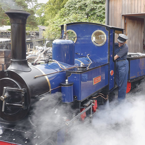 Steam Railway | Train | New Forest | Hampshire