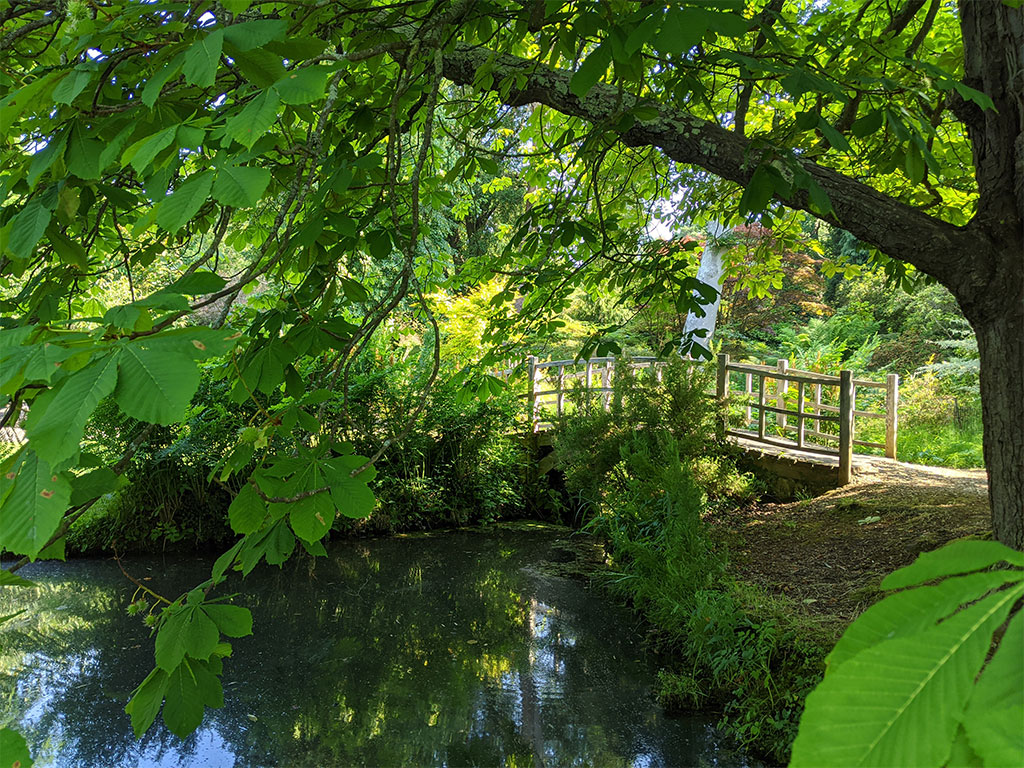Japanese Bridge | Top Pond | Exbury Gardens | New Forest, Hampshire