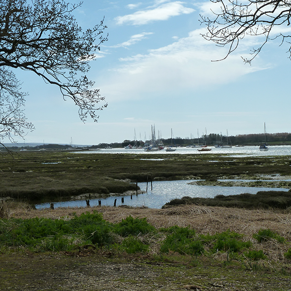 winter square