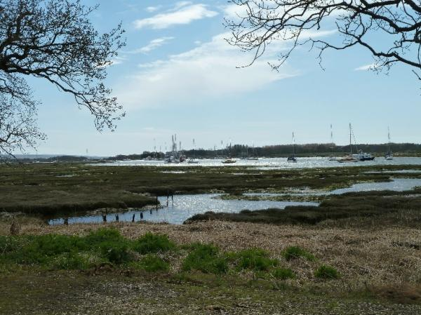 view of the Beaulieu River
